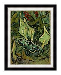 Vincent Van Gogh Emperor Moth canvas with modern black frame