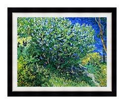Vincent Van Gogh Lilacs canvas with modern black frame