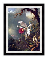 Martin Johnson Heade An Amethyst Hummingbird With A White Orchid canvas with modern black frame