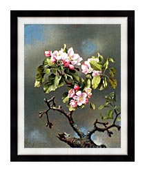 Martin Johnson Heade Branch Of Apple Blossoms Against A Cloudy Sky canvas with modern black frame