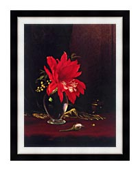 Martin Johnson Heade Red Flower In A Vase canvas with modern black frame