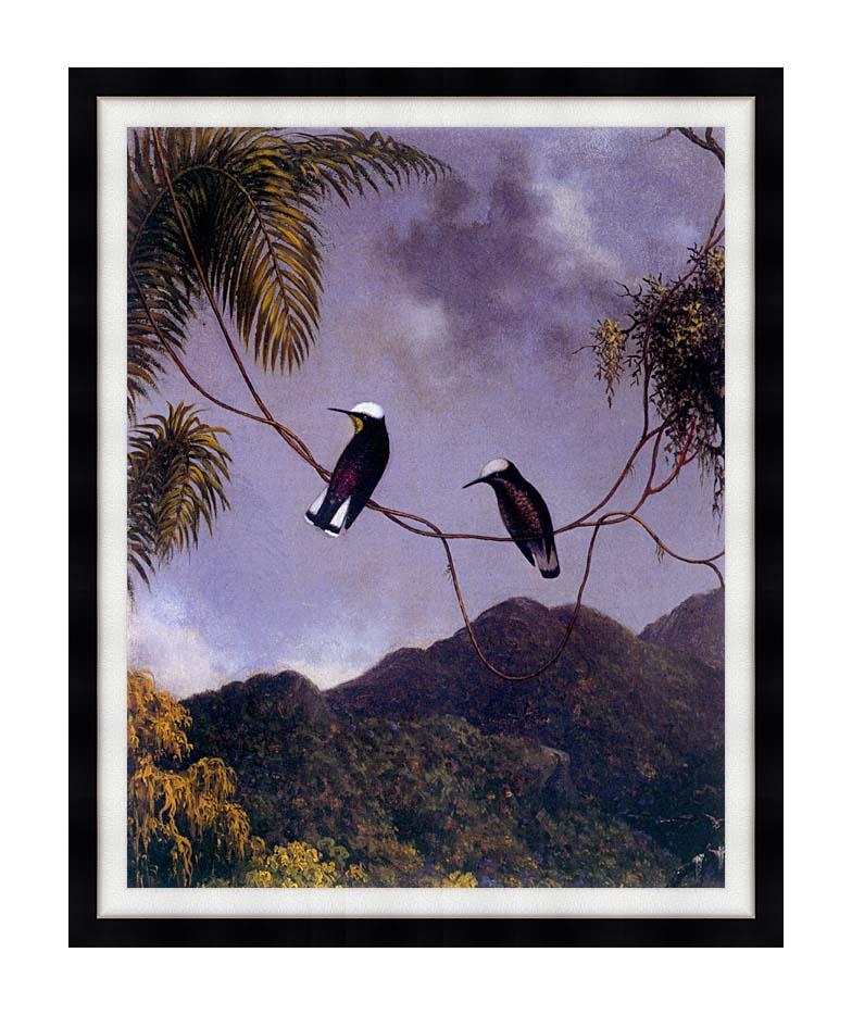 Martin Johnson Heade Snowcap Hummingbirds with Modern Black Frame
