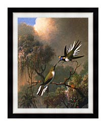 Martin Johnson Heade Two Sungems On A Branch canvas with modern black frame