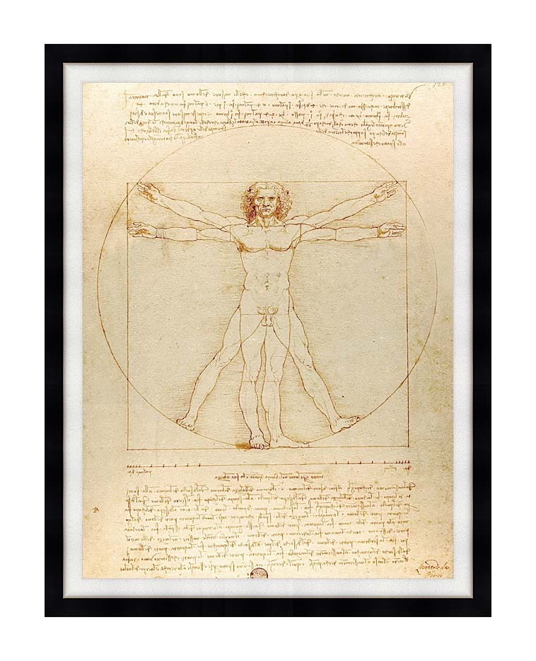 Leonardo Da Vinci Vitruvian Man with Modern Black Frame