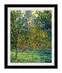 Claude Monet Under The Lemon Trees Bordighera canvas with modern black frame