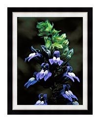 U S Fish And Wildlife Service Great Blue Lobelia canvas with modern black frame