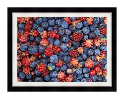 U S Fish And Wildlife Service Wild Berries canvas with modern black frame