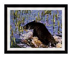 U S Fish And Wildlife Service Black Bear Cub In Pond canvas with modern black frame