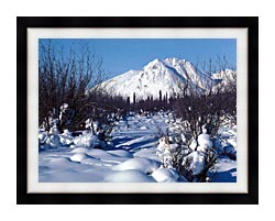 U S Fish And Wildlife Service Arctic Refuge In Winter canvas with modern black frame