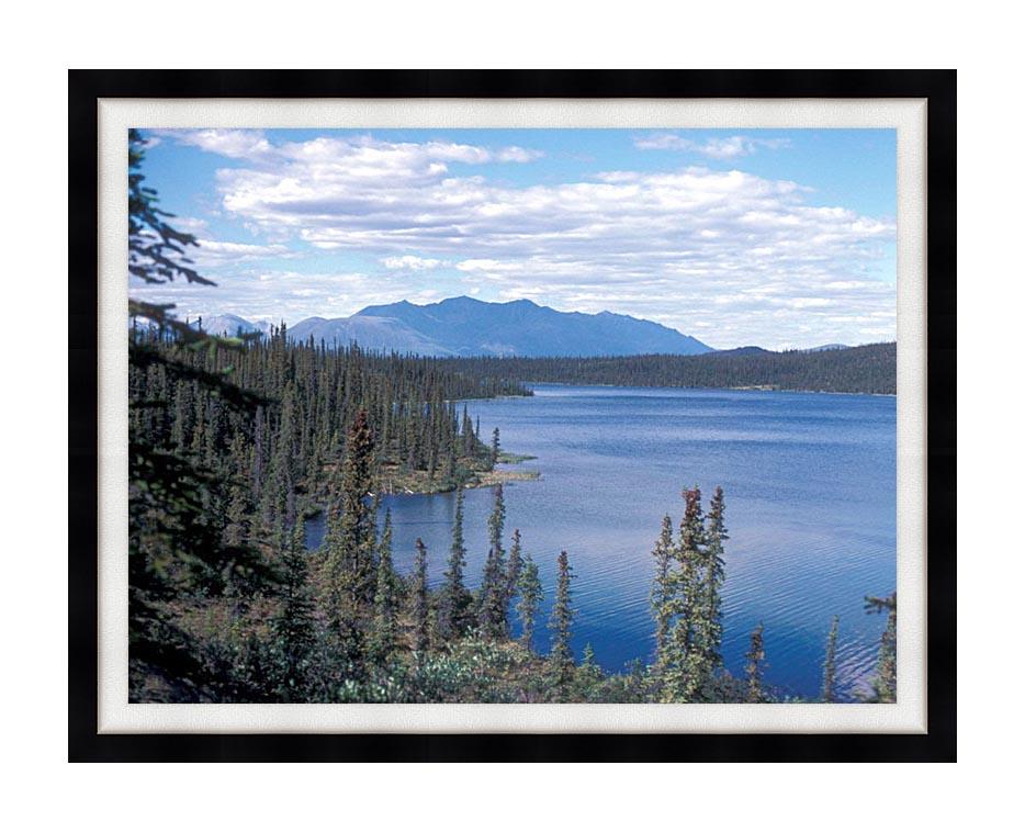 U S Fish and Wildlife Service Blackfish Lake with Modern Black Frame