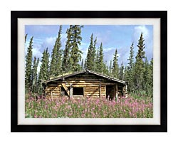 U S Fish And Wildlife Service Canyon Village Log Cabin canvas with modern black frame