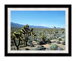 U S Fish And Wildlife Service Yucca Forest canvas with modern black frame