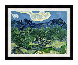 Vincent Van Gogh The Olive Trees canvas with modern black frame