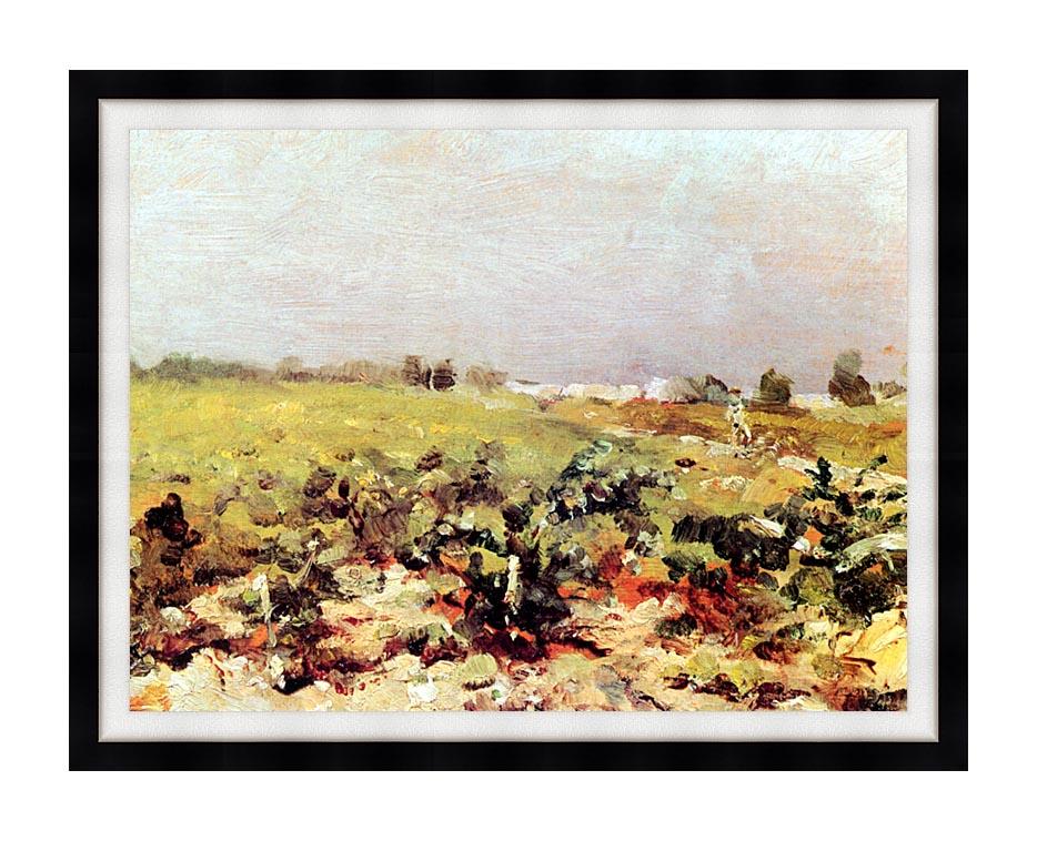 Henri de Toulouse Lautrec Celeyran View of the Vineyards with Modern Black Frame