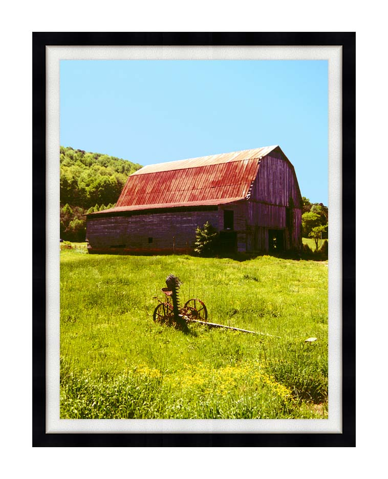 Ray Porter Country Springtime with Modern Black Frame