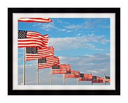Visions of America American Flags At Washington National Monument canvas with modern black frame