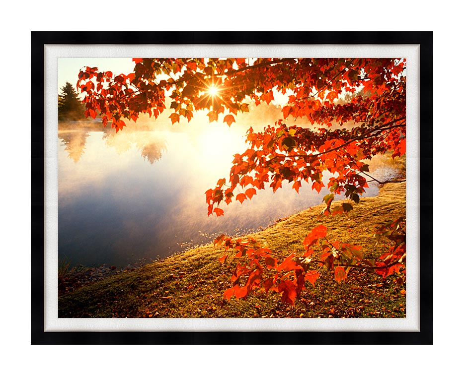 Visions of America Misty Pond with Autumn Leaves in Connecticut with Modern Black Frame