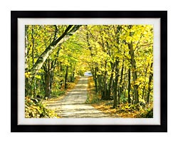 Visions of America Tree Covered Road In The Woods New England canvas with modern black frame