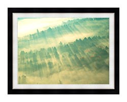 Visions of America Aerial View Of Forest On A Misty Morning Vermont canvas with modern black frame