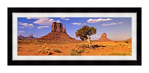 Visions of America The Three Mittens And A Desert Tree canvas with Modern Black frame