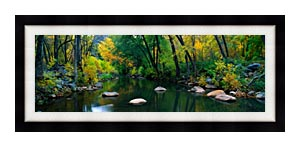 Visions of America Cottonwood Canyon In The Autumn canvas with Modern Black frame