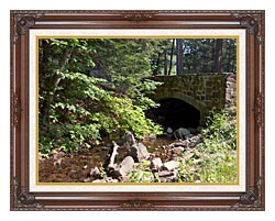 Brandie Newmon Rock Bridge At Mount Tom Massachusetts canvas with dark regal wood frame
