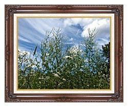 Brandie Newmon Wild Flower Field In Easthampton Massachusetts canvas with dark regal wood frame