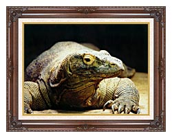 Brandie Newmon Komodo Dragon canvas with dark regal wood frame