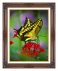 Brandie Newmon Yellow And Black Butterfly canvas with dark regal wood frame