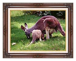 Brandie Newmon Wallaby Mother And Baby canvas with dark regal wood frame