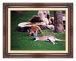 Brandie Newmon Kangaroo With Baby canvas with dark regal wood frame