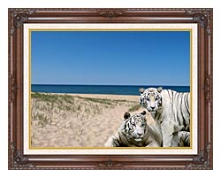 Brandie Newmon White Tigers At The Beach canvas with dark regal wood frame