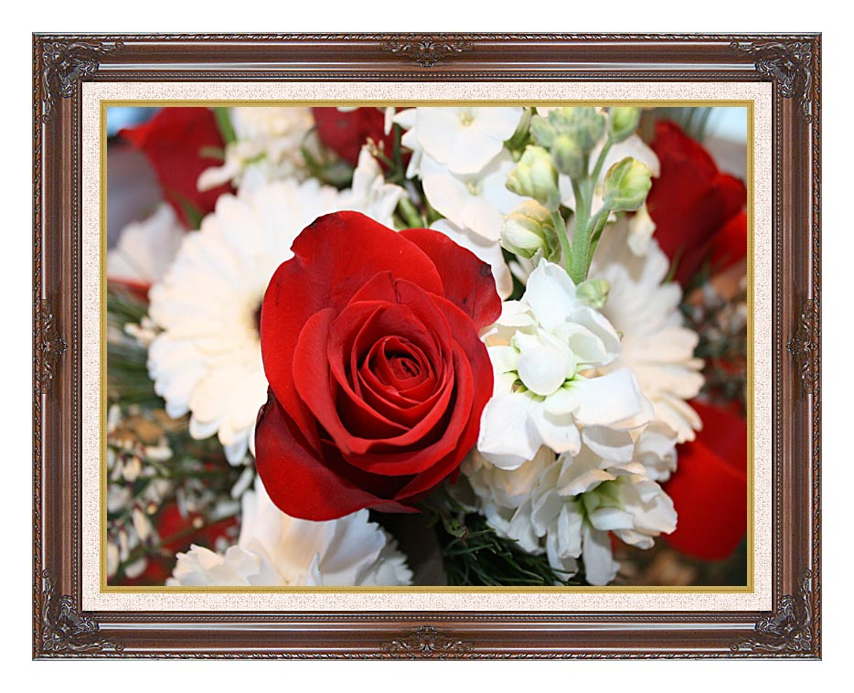 Kim O'Leary Photography Christmas Rose with Dark Regal Frame w/Liner