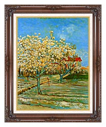 Vincent Van Gogh Orchard In Blossom canvas with dark regal wood frame