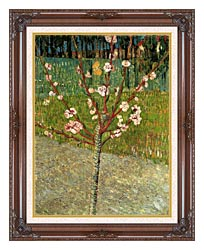 Vincent Van Gogh Almond Tree In Blossom canvas with dark regal wood frame