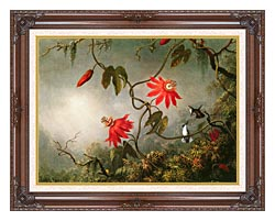 Martin Johnson Heade Passion Flowers And Hummingbirds canvas with dark regal wood frame