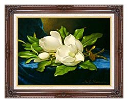 Martin Johnson Heade Magnolias On A Blue Velvet Cloth canvas with dark regal wood frame
