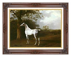 Jacques Laurent Agasse White Horse In A Meadow canvas with dark regal wood frame