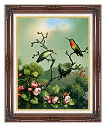 Martin Johnson Heade Ruby Throat Of North America canvas with dark regal wood frame