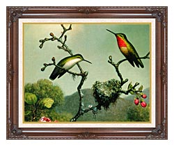 Martin Johnson Heade Ruby Throat Of North America Detail canvas with dark regal wood frame