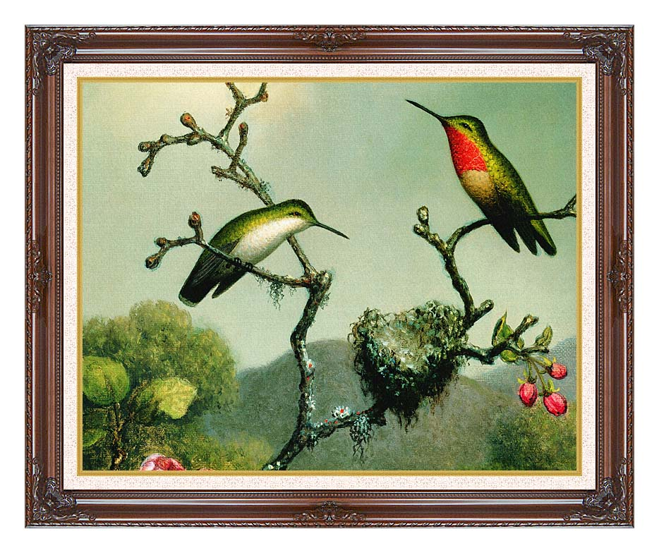 Martin Johnson Heade Ruby Throat of North America (detail) with Dark Regal Frame w/Liner