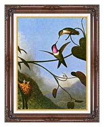 Martin Johnson Heade Amethyst Woodstar Detail canvas with dark regal wood frame