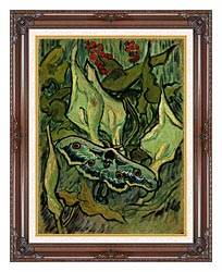 Vincent Van Gogh Emperor Moth canvas with dark regal wood frame