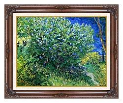 Vincent Van Gogh Lilacs canvas with dark regal wood frame