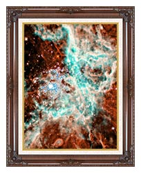 Courtesy Nasa Jpl Caltech 30 Doradus Nebula In Large Magellic Cloud Portrait Detail canvas with dark regal wood frame