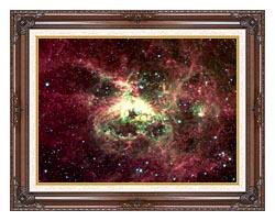 Courtesy Nasa Jpl Caltech 30 Doradus Newborn Stars Of Tarantula Nebula canvas with dark regal wood frame
