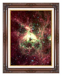 Courtesy Nasa Jpl Caltech 30 Doradus Newborn Stars Of Tarantula Nebula Portrait Detail canvas with dark regal wood frame