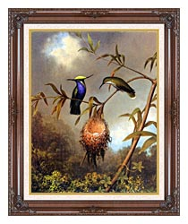 Martin Johnson Heade Black Breasted Plovercrest canvas with dark regal wood frame