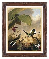 Martin Johnson Heade Black Eared Fairy canvas with dark regal wood frame