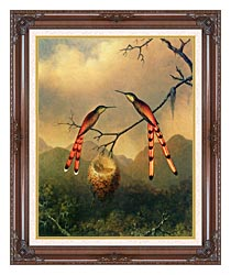 Martin Johnson Heade Two Hummingbirds With Their Young canvas with dark regal wood frame